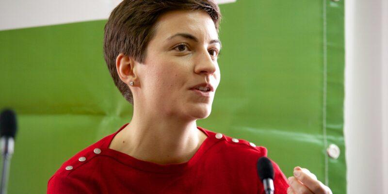 Ska Keller, Partito Verdi in Germania
