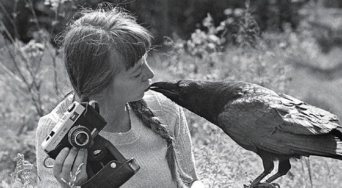 Simona Kossak, la mamma degli animali