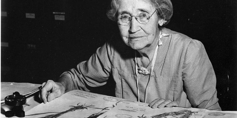 Mary Agnes Chase, botanica e suffragista